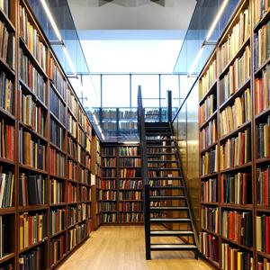Библиотеки Кыштыма