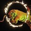 Цирки в Кыштыме